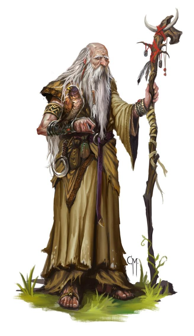 elder_druid_by_caiomm-d7ar12n