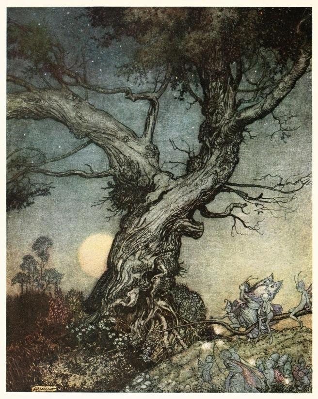 02-arthur-rackham-imagina-1914-frontispiece-_o